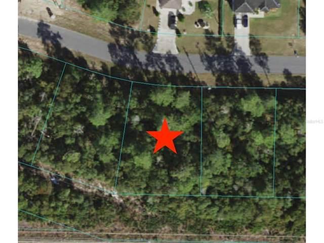 Sw 134Th Loop, Ocala, FL 34473 (MLS #OM622414) :: Zarghami Group
