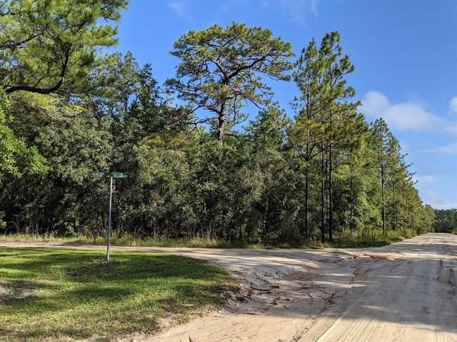 00 Pine Ct, Melrose, FL 32666 (MLS #OM622420) :: Bridge Realty Group