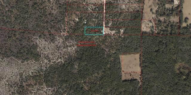 9050 NE 137 Court, Williston, FL 32696 (MLS #OM622421) :: Prestige Home Realty