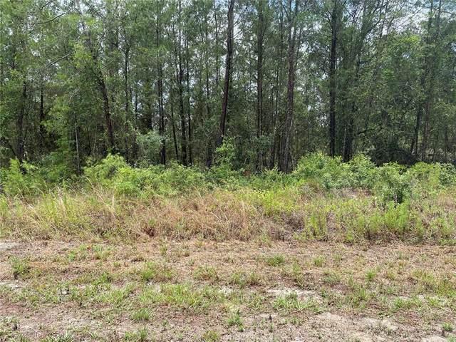 SW Beaver Drive, Dunnellon, FL 34431 (MLS #OM622451) :: Armel Real Estate