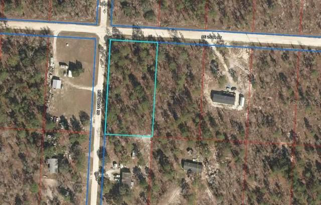 2551 SE 133RD Terrace, Morriston, FL 32668 (MLS #OM622483) :: Alpha Equity Team