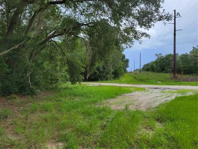 00 S Bridges Road, Dunnellon, FL 34432 (MLS #OM622559) :: GO Realty