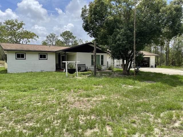 1771 SW Fig Tree Lane, Dunnellon, FL 34431 (MLS #OM622574) :: Prestige Home Realty