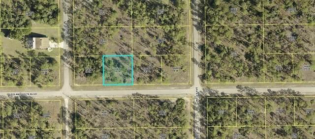 4103 Leeland Heights Boulevard E, Lehigh Acres, FL 33936 (MLS #OM622575) :: Frankenstein Home Team