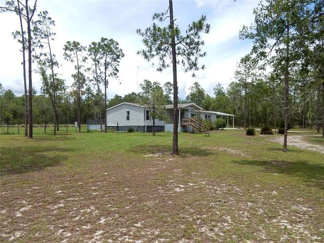 3190 NE 127TH Court, Williston, FL 32696 (MLS #OM622576) :: Armel Real Estate