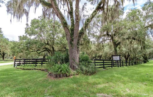 18253 NW 20TH Avenue, Citra, FL 32113 (MLS #OM622635) :: Better Homes & Gardens Real Estate Thomas Group