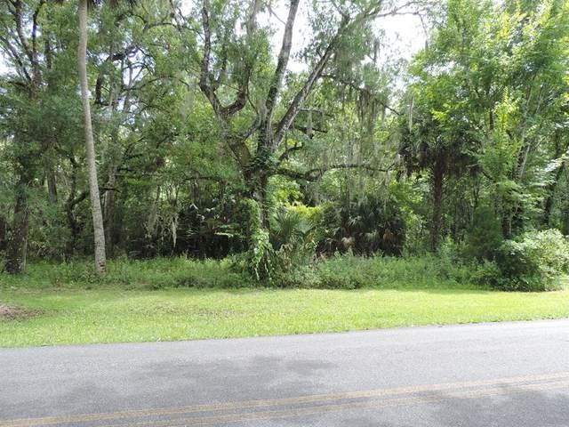 332 NW Crystal Street, Crystal River, FL 34428 (MLS #OM622656) :: Zarghami Group