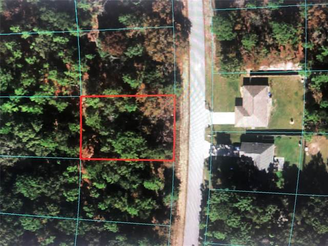 TBD Locust Pass Lane, Ocala, FL 34472 (MLS #OM622660) :: Globalwide Realty