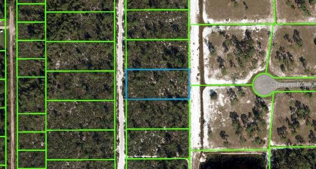 6418 Olga Avenue, Sebring, FL 33875 (MLS #OM622692) :: Gate Arty & the Group - Keller Williams Realty Smart