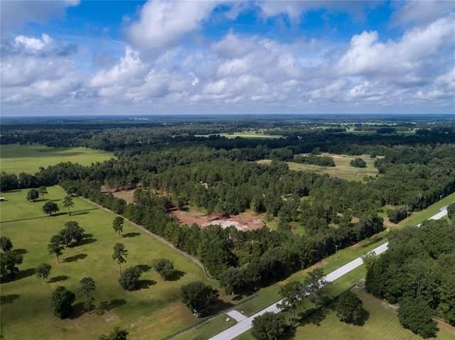 15600 W Highway 316, Williston, FL 32696 (MLS #OM622711) :: Rabell Realty Group