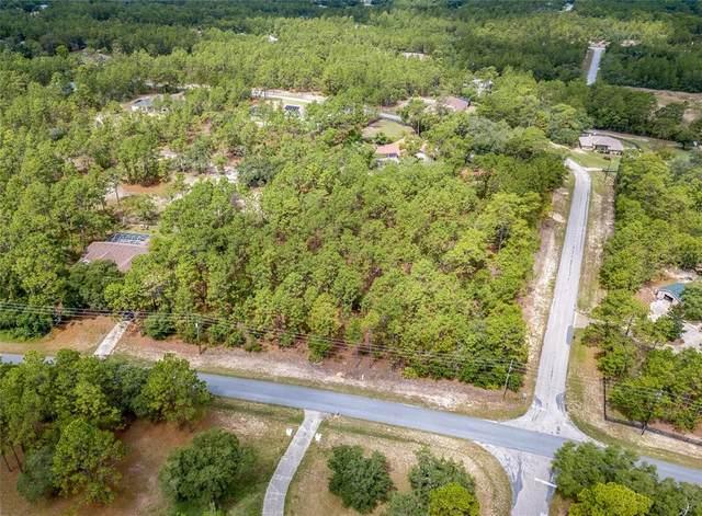 4426 N Amarillo Drive, Beverly Hills, FL 34465 (MLS #OM622750) :: Premium Properties Real Estate Services