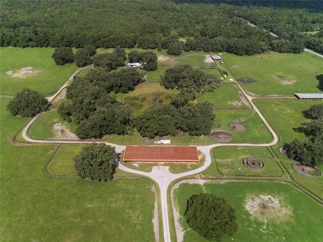 14820 NW 100TH AVENUE Road, Reddick, FL 32686 (MLS #OM622903) :: Premium Properties Real Estate Services