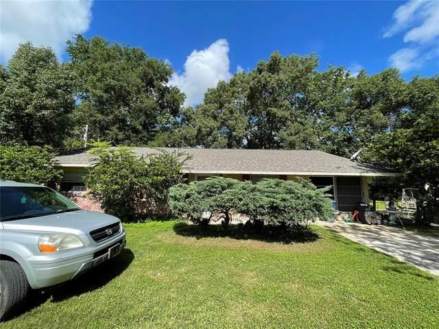 179 NW 47TH Place, Ocala, FL 34475 (MLS #OM622910) :: Zarghami Group