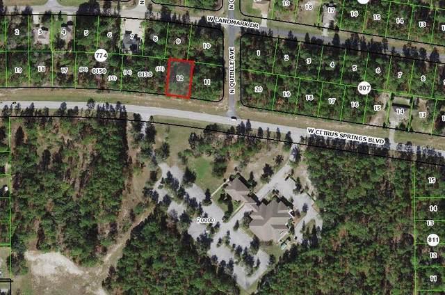 1591 W Citrus Springs Boulevard, Citrus Springs, FL 34434 (MLS #OM622920) :: The Paxton Group