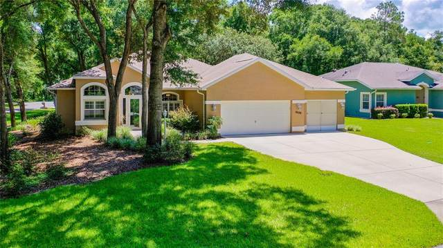 10159 SW 192ND Circle, Dunnellon, FL 34432 (MLS #OM622973) :: Griffin Group