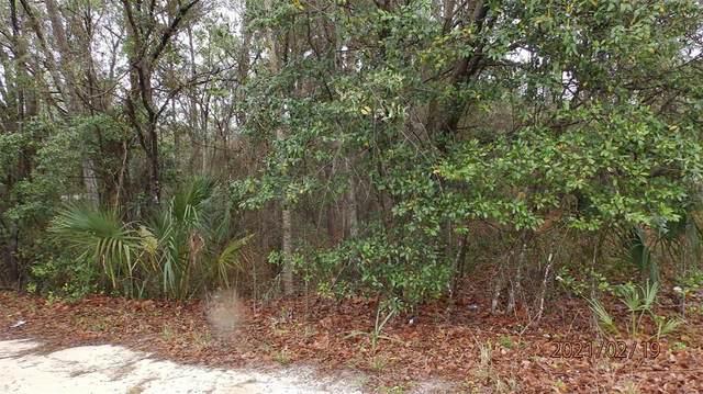 12313 N Elf Point, Dunnellon, FL 34433 (MLS #OM623076) :: Team Bohannon