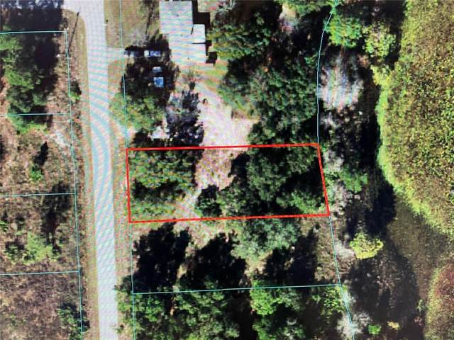 TBD SW Shorewood Drive, Dunnellon, FL 34431 (MLS #OM623100) :: Better Homes & Gardens Real Estate Thomas Group