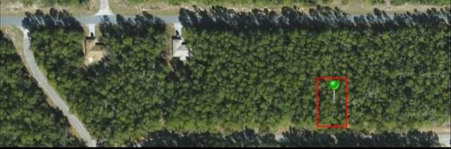 257 E Gamewell Lane, Citrus Springs, FL 34434 (MLS #OM623124) :: RE/MAX Elite Realty
