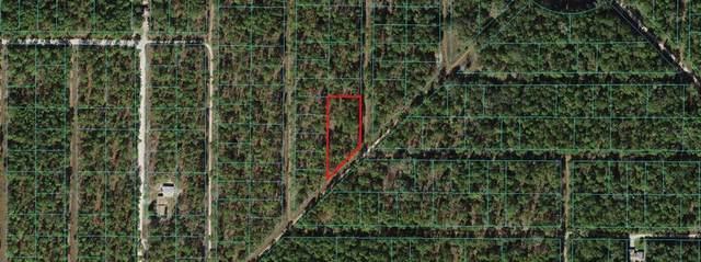 TBD SW 155TH Court, Ocala, FL 34481 (MLS #OM623148) :: The Price Group