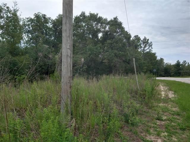 2510 W Bravura Drive, Citrus Springs, FL 34433 (MLS #OM623196) :: Cartwright Realty