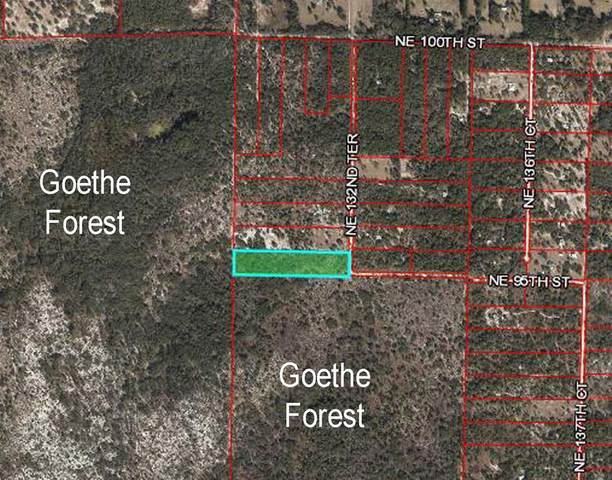 9510 NE 132ND Terrace, Williston, FL 32696 (MLS #OM623225) :: Your Florida House Team