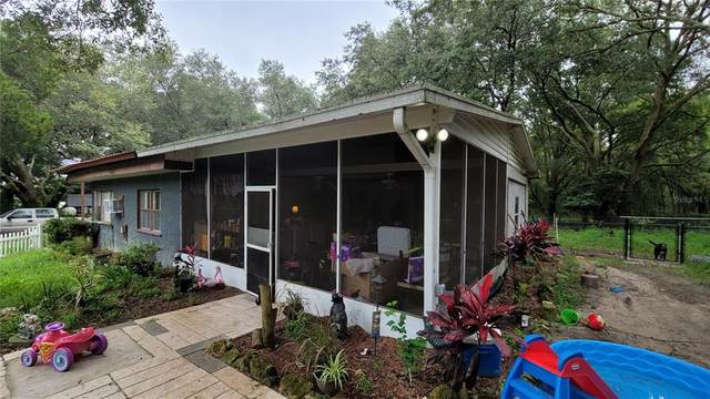 17455 SE 130TH Avenue, Weirsdale, FL 32195 (MLS #OM623249) :: The Curlings Group