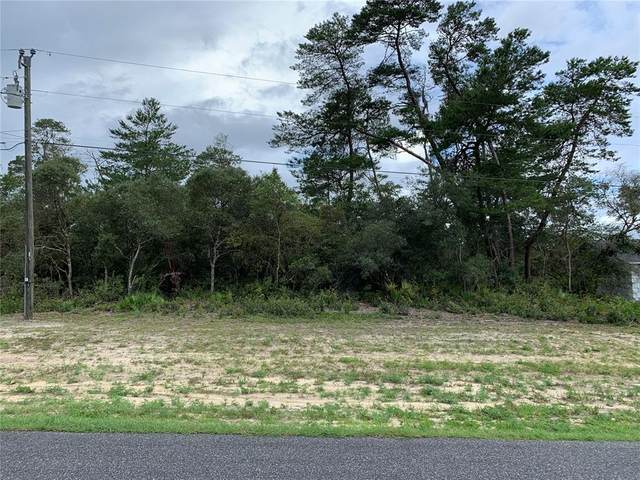 TBD SW 36TH AVE Road, Ocala, FL 34473 (MLS #OM623268) :: Better Homes & Gardens Real Estate Thomas Group