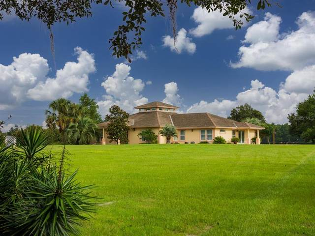 16185 NW 46TH Street, Morriston, FL 32668 (MLS #OM623306) :: The Curlings Group