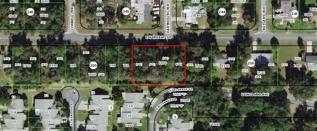 807 East Harvard Street, Inverness, FL 34452 (MLS #OM623348) :: Better Homes & Gardens Real Estate Thomas Group