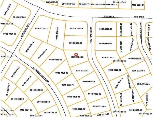 6 Pine Trace Loop, Ocala, FL 34472 (MLS #OM623480) :: Prestige Home Realty