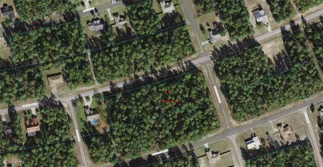 Marion Oaks Lane, Ocala, FL 34473 (MLS #OM623503) :: Zarghami Group