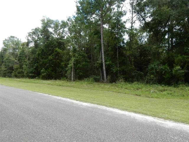 16150 NE 55TH Street, Williston, FL 32696 (MLS #OM623590) :: RE/MAX Elite Realty