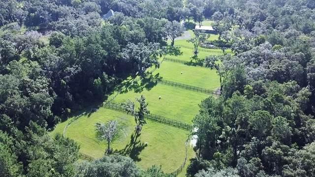 15606 NW 100TH AVENUE Road, Reddick, FL 32686 (MLS #OM623620) :: Premium Properties Real Estate Services