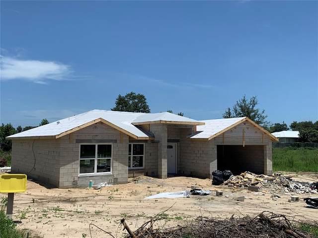 19 Juniper Radial, Ocala, FL 34480 (MLS #OM623676) :: Better Homes & Gardens Real Estate Thomas Group