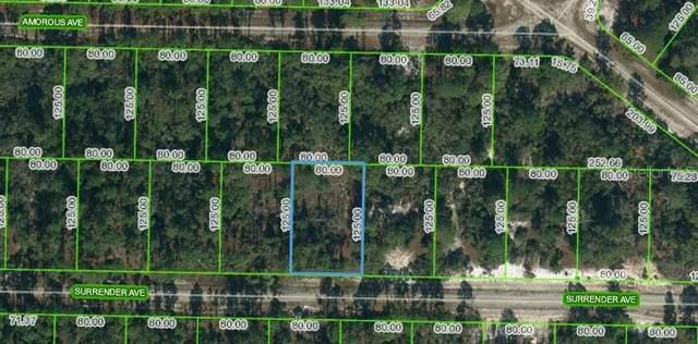 420 Surrender Avenue, Lake Placid, FL 33852 (MLS #OM623716) :: Zarghami Group