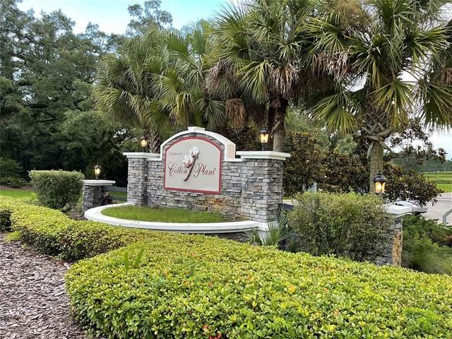 Sw 144Th Court Road, Ocala, FL 34481 (MLS #OM623840) :: Zarghami Group