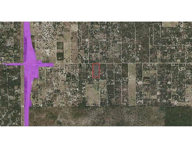 6962 S Hobbs Point, Lecanto, FL 34461 (MLS #OM623866) :: Gate Arty & the Group - Keller Williams Realty Smart