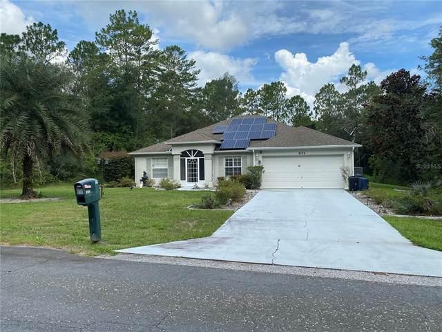 8124 N Pocono Drive, Citrus Springs, FL 34434 (MLS #OM623946) :: Griffin Group