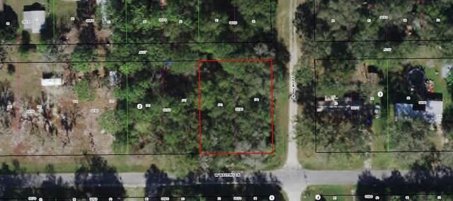 3897 W Waiting Lane, Dunnellon, FL 34433 (MLS #OM623969) :: Prestige Home Realty