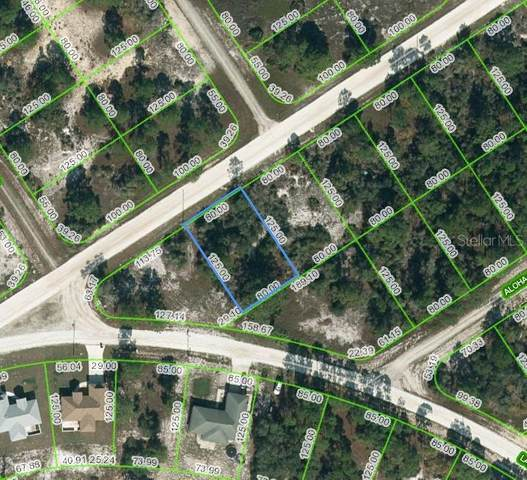 443 Gloria Boulevard, Lake Placid, FL 33852 (MLS #OM623972) :: Zarghami Group