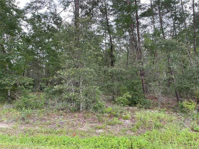 0 SW 107TH Place, Dunnellon, FL 34432 (MLS #OM623974) :: Zarghami Group