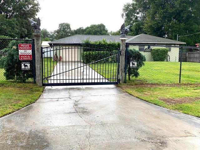 2385 Robert D Road, Mount Dora, FL 32757 (MLS #OM623992) :: Bridge Realty Group