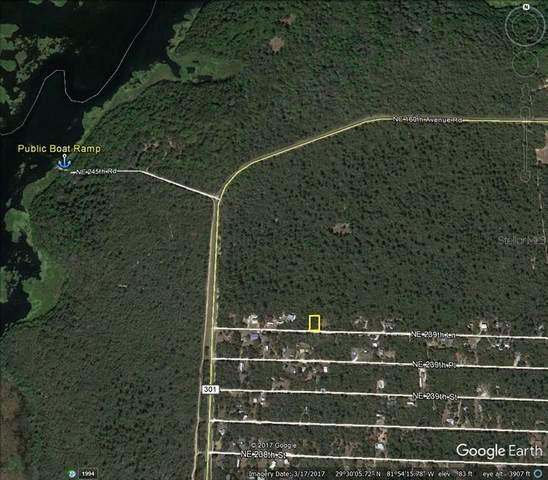 NE 239TH Lane, Fort Mc Coy, FL 32134 (MLS #OM623996) :: Zarghami Group