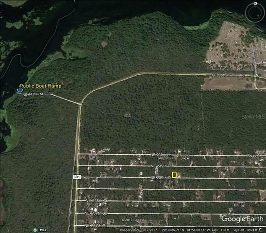 NE 239TH Street, Fort Mc Coy, FL 32134 (MLS #OM623997) :: Zarghami Group