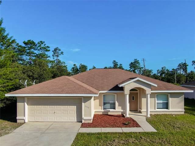 2729 SW 165 ST Road, Ocala, FL 34472 (MLS #OM624045) :: EXIT Realty Positive Edge