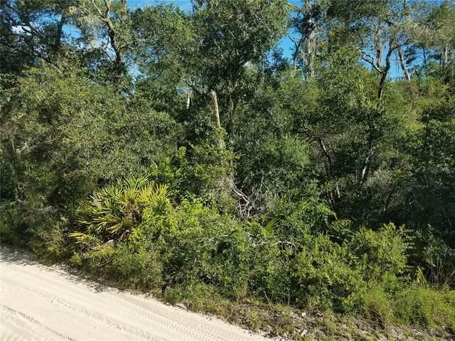 15870 NE 234TH Lane, Fort Mc Coy, FL 32134 (MLS #OM624059) :: The Hustle and Heart Group