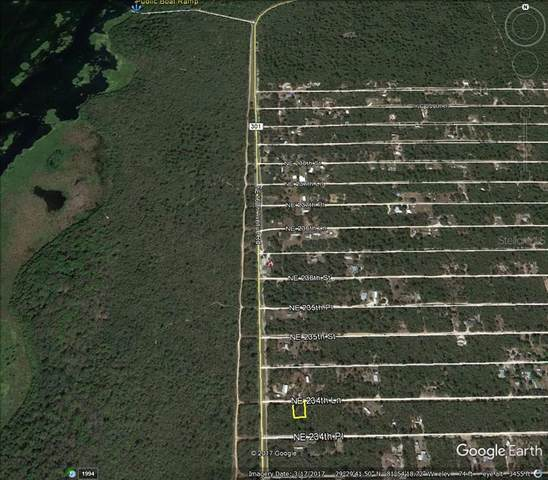 NE 234TH Place, Fort Mc Coy, FL 32134 (MLS #OM624061) :: The Hustle and Heart Group