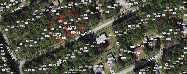 3545 E Yandle Place, Inverness, FL 34453 (MLS #OM624069) :: The Hustle and Heart Group