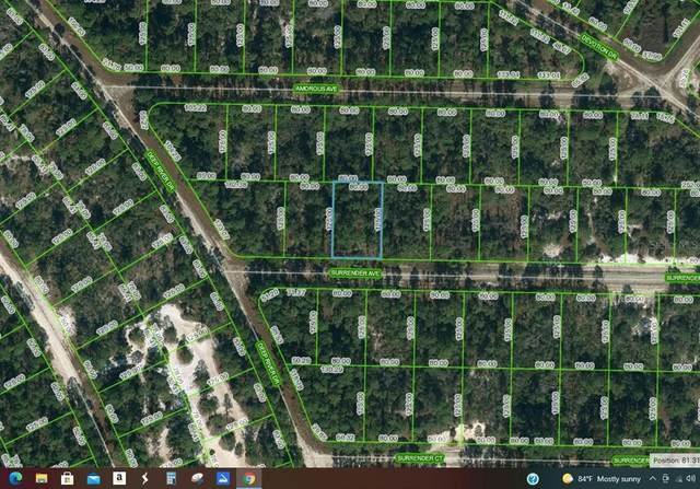 414 Surrender Avenue, Lake Placid, FL 33852 (MLS #OM624088) :: Bridge Realty Group