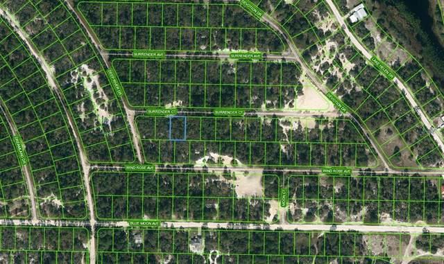 415 Surrender Court, Lake Placid, FL 33852 (MLS #OM624089) :: Zarghami Group